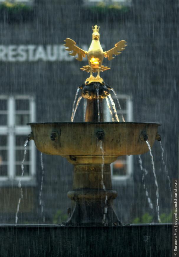 На рыночную площадь мы попали в ливень. Это главный фонтан с орлом, символом кайзеров.