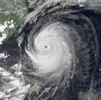 Тайфун в Японии стал причиной отмены почти сотни авиарейсов