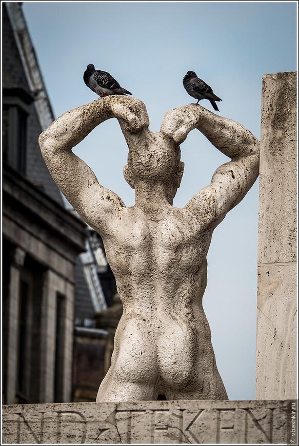 Вид сзади с голубями.