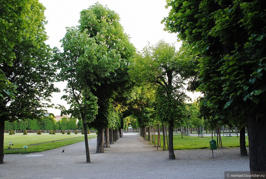 В парке Аугартен