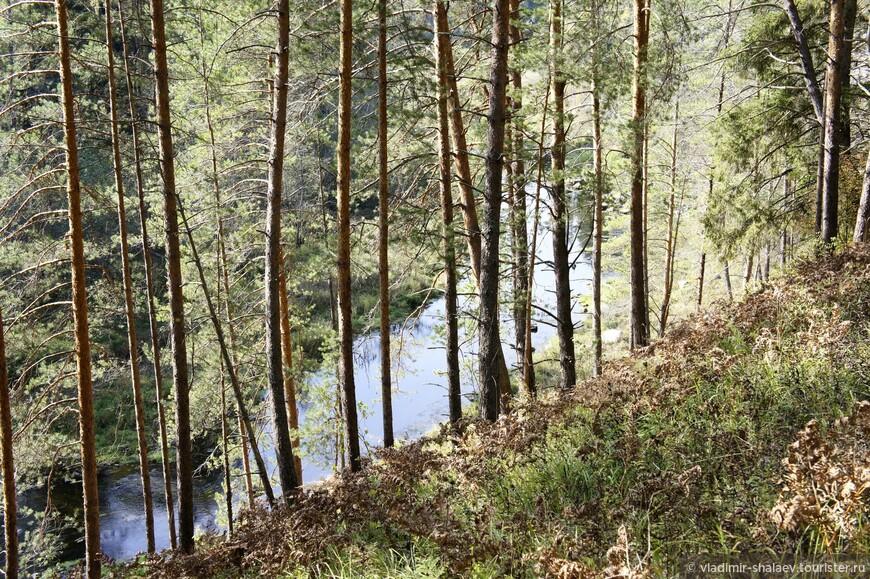 Это река Дёржа - правый приток Волги.