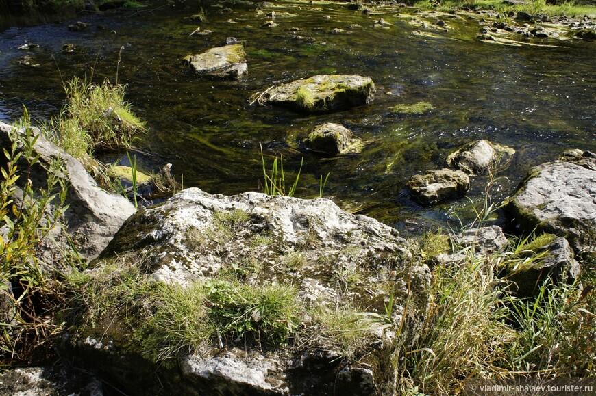 На дне реки — плоские известняково-кремнёвые плиты.