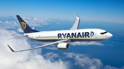 Ryanair разрешает перевозку домашних животных в салоне самолета