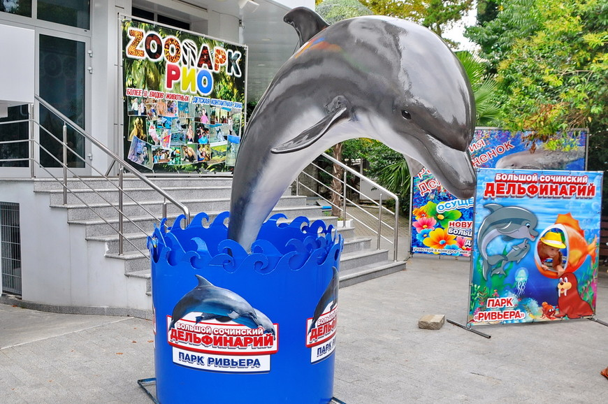 10. В сам дельфинарий я не ходил, так как уже был в Сочи Парке. Вход, как мне показалось, не самый удобный – прямо через Ривьеру.
