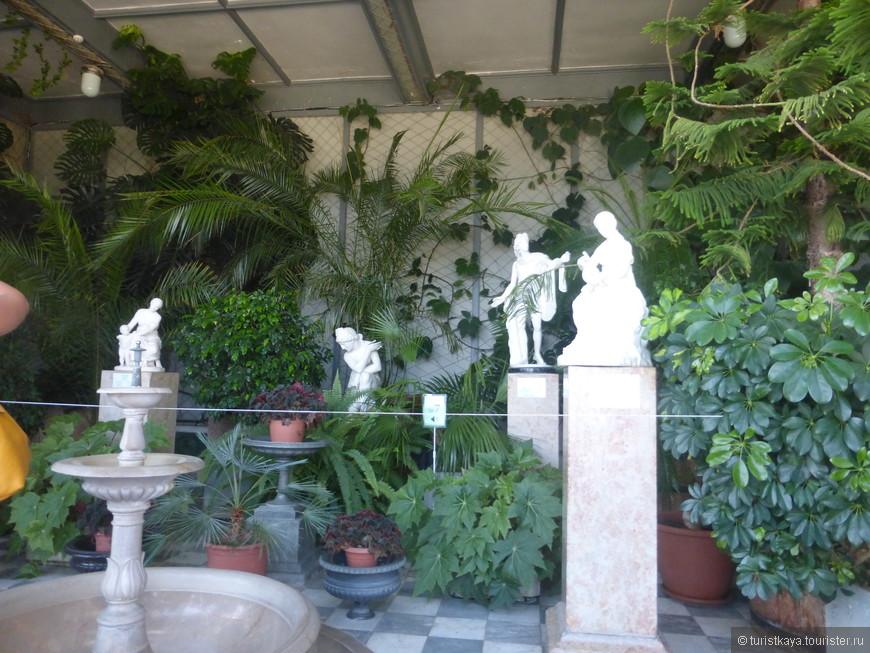 Зимний сад во дворце