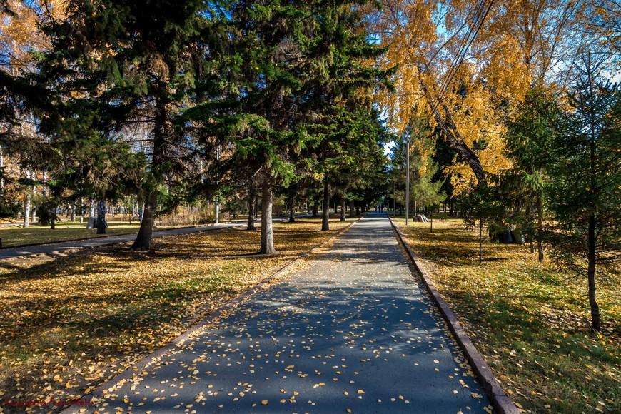 Идем дальше, в парк...