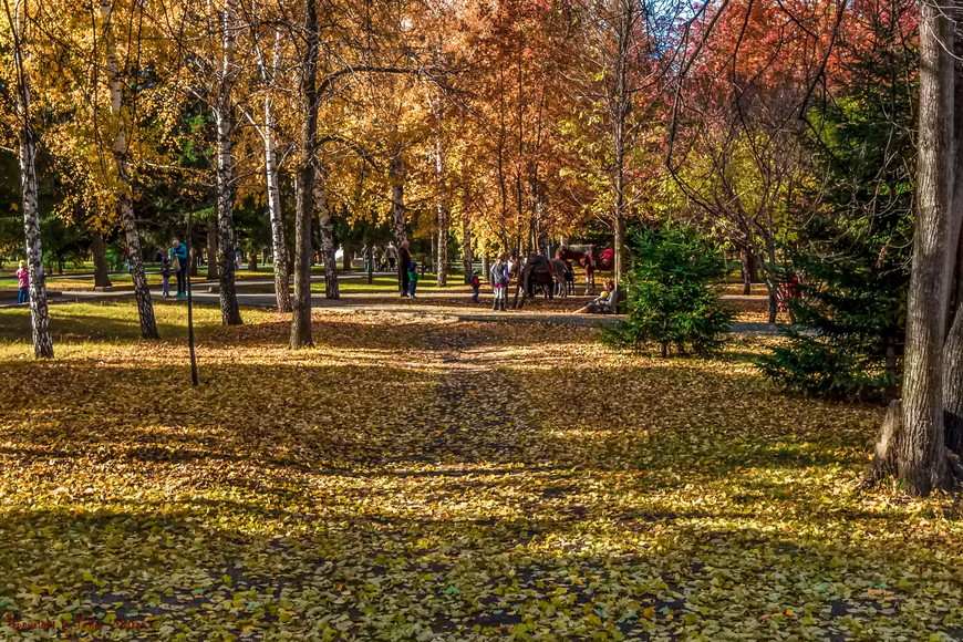 Russia [Novosibirsk][War Memorial][I][09.10.2015][19].jpg