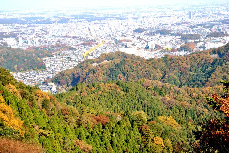 Вид с горы Такао