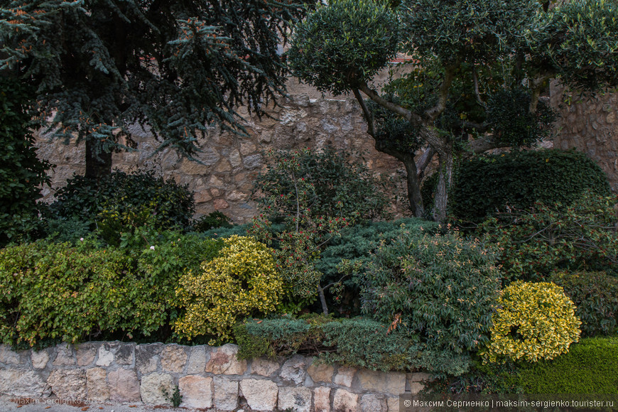 Растительность там тоже присутствует. И даже с элементами ландшафтного дизайна.