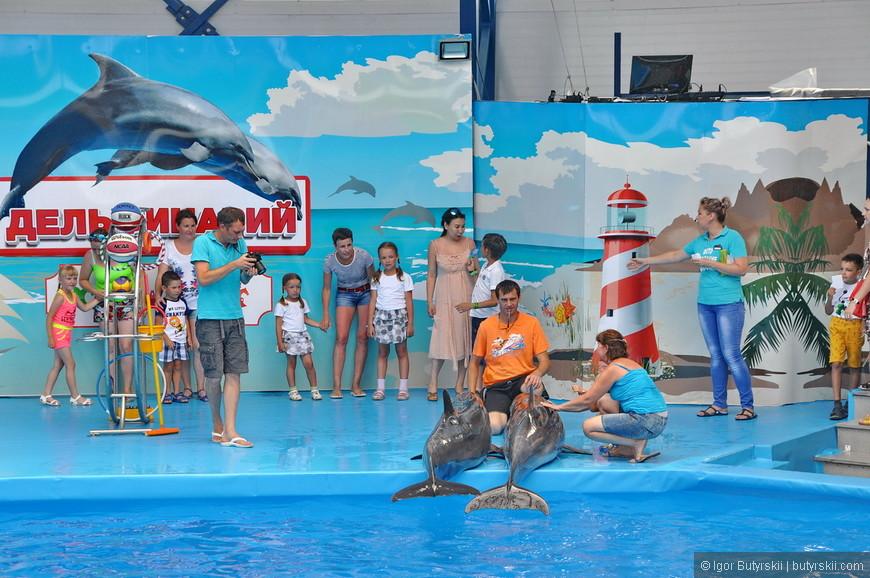 07. Набралась целая очередь, то есть дельфины еще не выступали, а уже приносят деньги.
