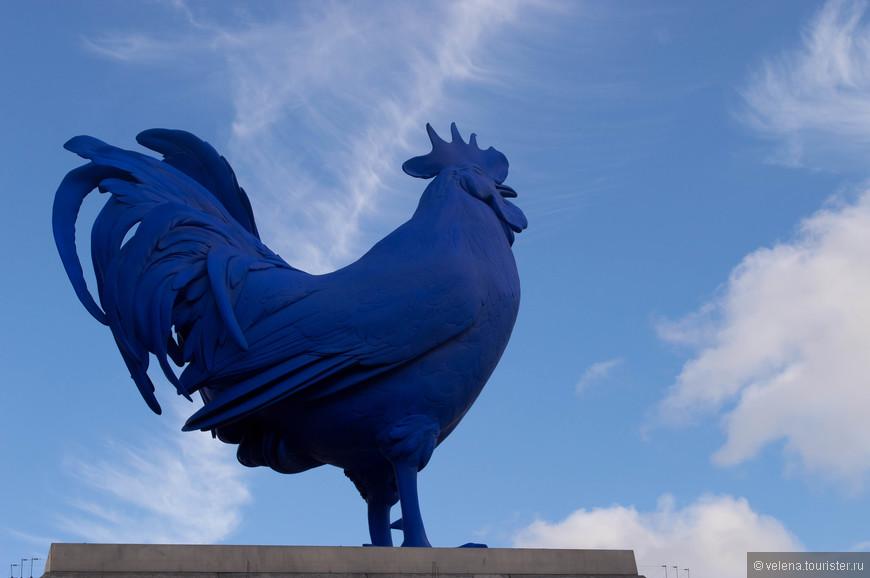 Знаменитый петух на Трафальгальской площади