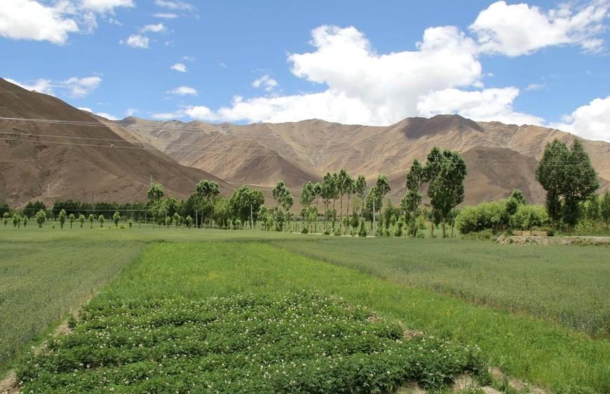 Пейзаж плодородного района Шаньнань в Тибете