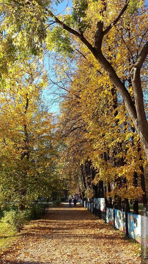 Осеннее золото Краснокамска.