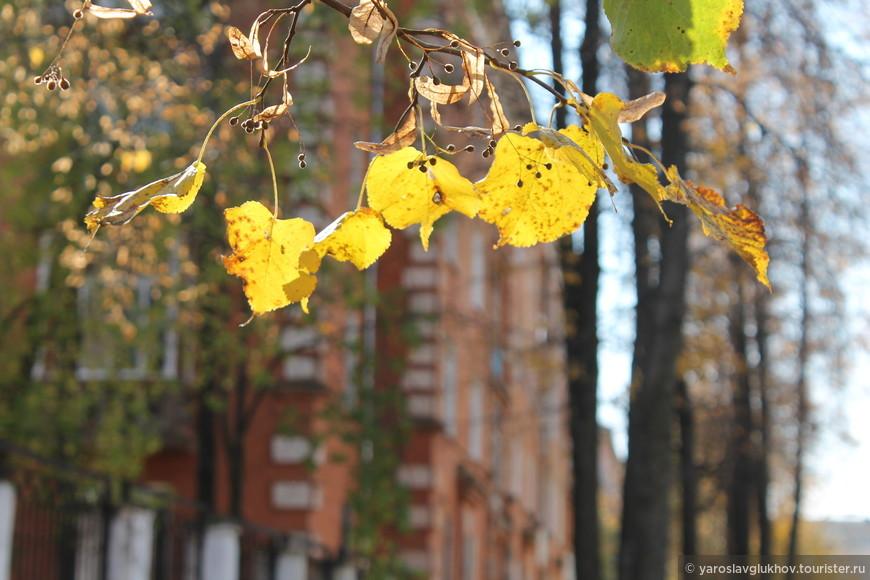 На улицах города — самая настоящая осень в сентябре.