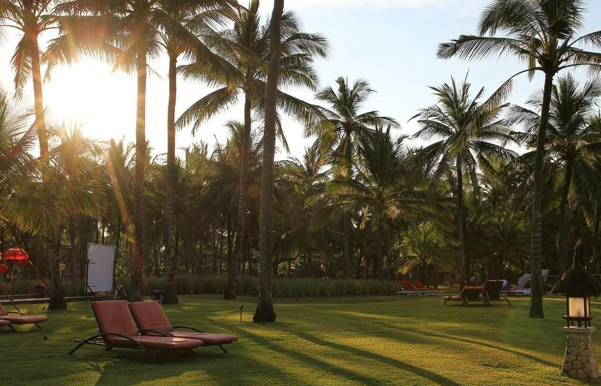 Как вариант - отдых под пальмами, на лужайке.
