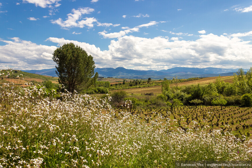 Жарким апрельским днем в долине