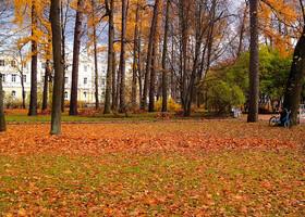 Осень...Царское село.