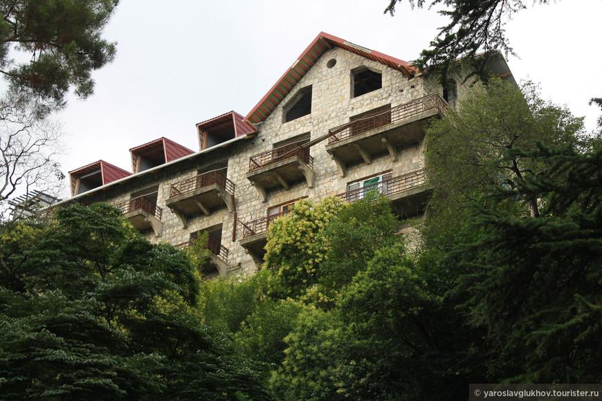 Сквозь зелёные заросли Старой Гагры виднеются отели с видом на Приморский парк и Чёрное море.