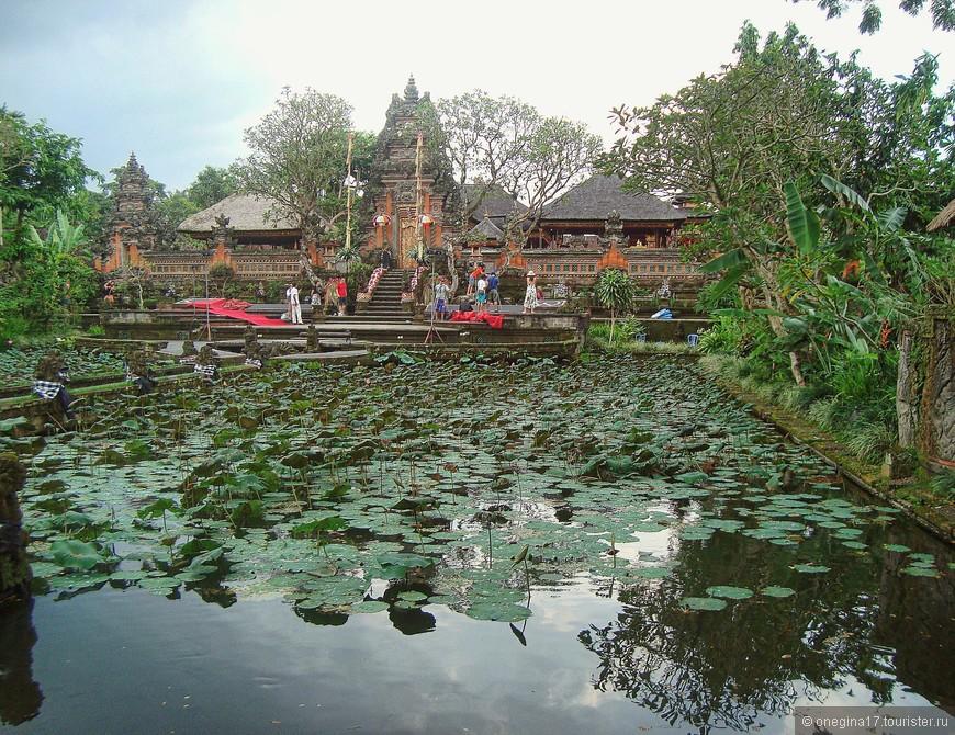 Убуд. Намного сильнее храма меня интересовал пруд с лотосами. Но коварные цветы так и не расцвели к моему приезду...