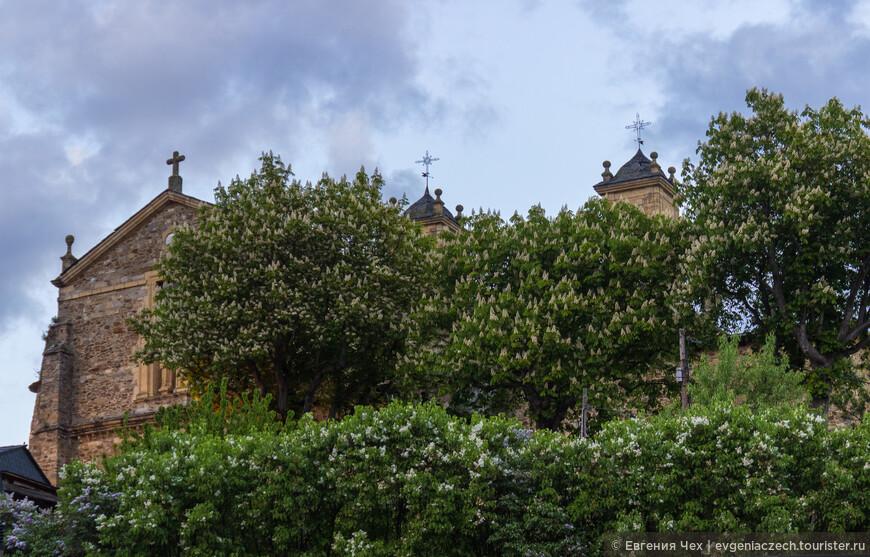 Самая большая церковь Calegiata de Santa Maria, 16 век
