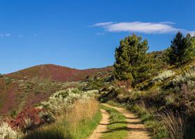 Camino: Вилльяфранка и Camino Duro
