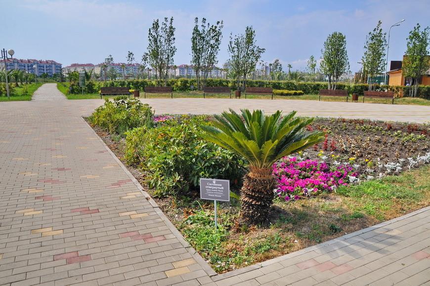 03. Парк занимает довольно большую площадь, находится в непосредственной близости к олимпийскому кластеру.