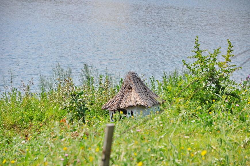 12. Домик для птиц возле воды. Первая линия даже тут.