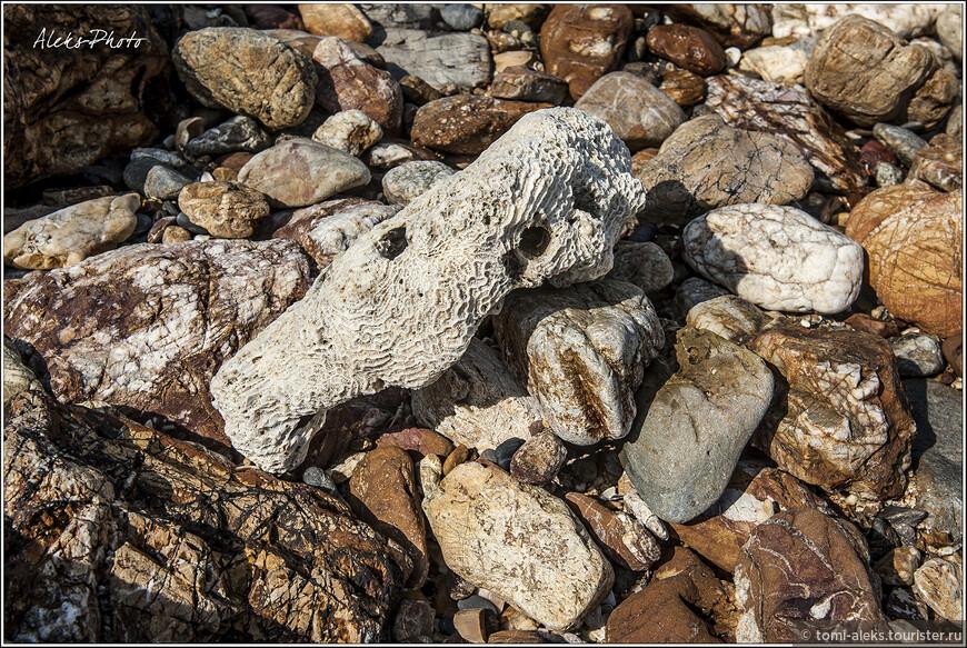 Прибрежные камни всех возможных форм...