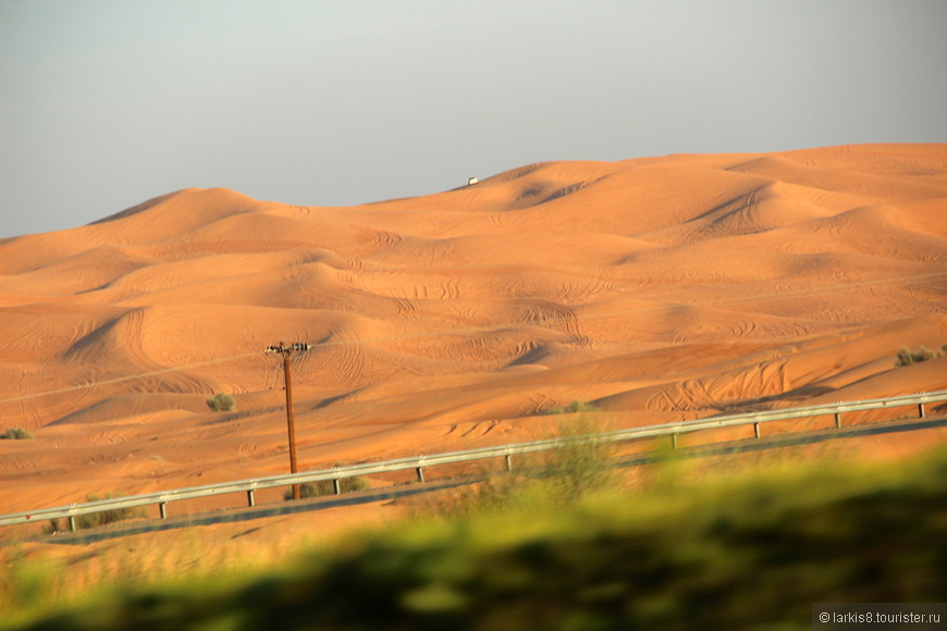 Площадь, где проводят сафари очень большая. У каждых своя определенная территория, на которой проводят поездки.