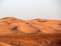 Дубай. Сафари.