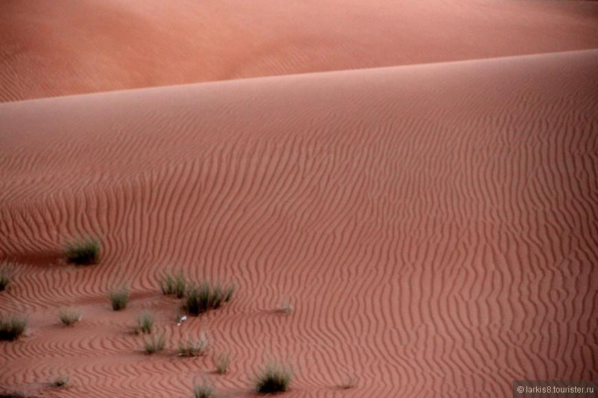 Настоящее песчаное море!