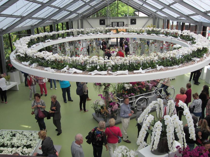 Этот павильон посвящен орхидеям.