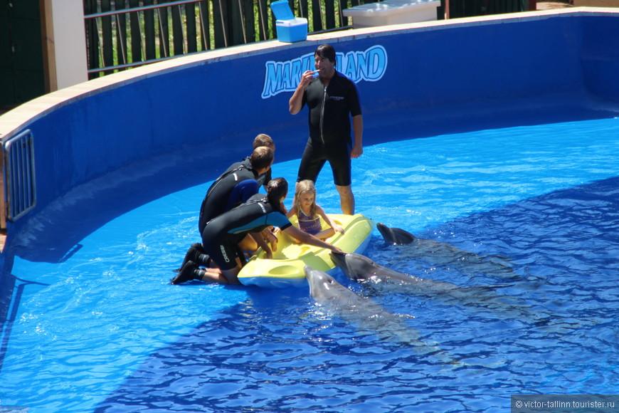 Счастливый ребенок, приглашенный из аудитории и посаженный в лодку, движущей силой для которой выступят дельфины.