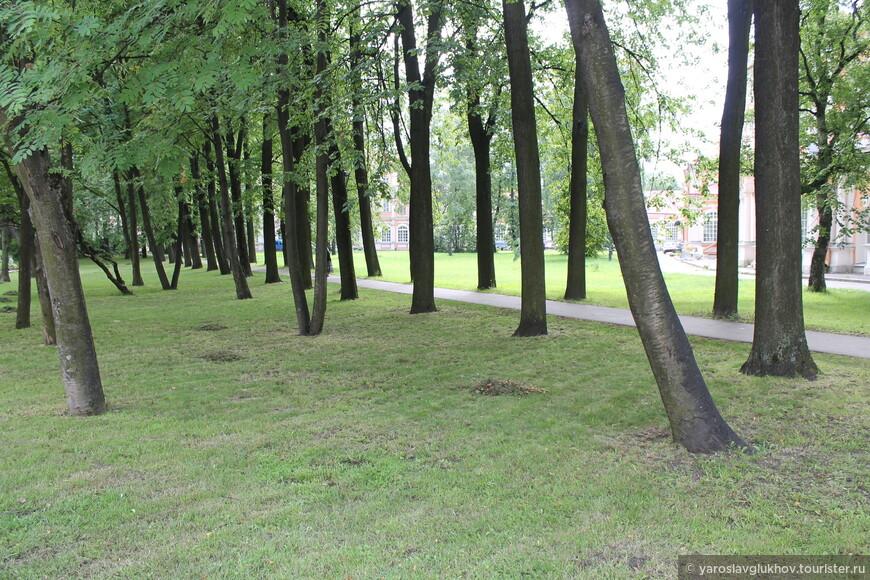 Лавра — очень зелёное место.