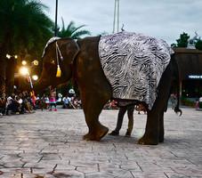 """В Таиланде на шоу """"Ночное сафари"""" слон напал на посетителей"""