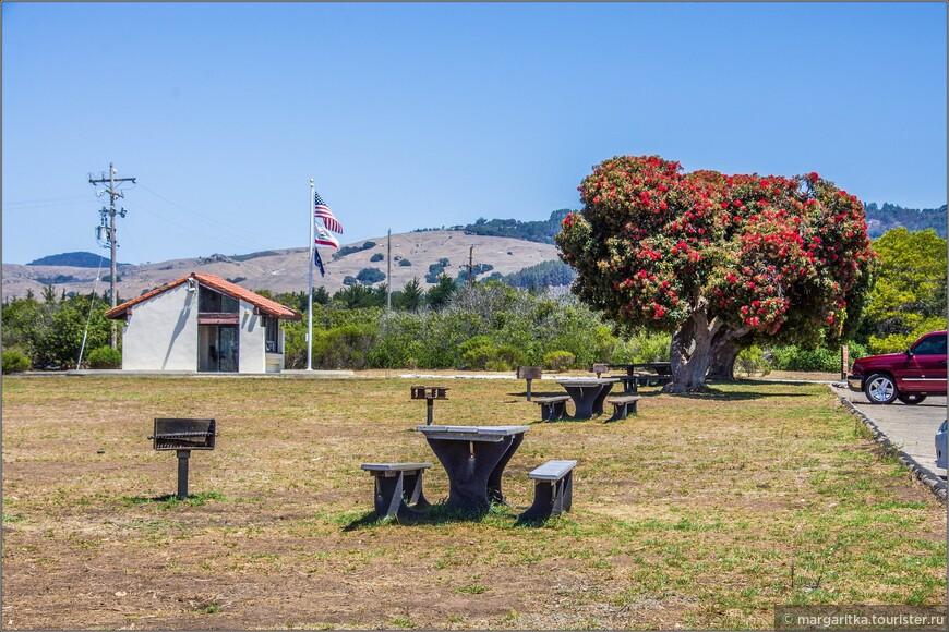 Рядом с бухтой в заливе Сан Симеон - в Арио дель пуэрто (район порта) разбит большой паркинг, но бесплатный, на территории, которого почти все время цветут какие-нибудь из деревьев