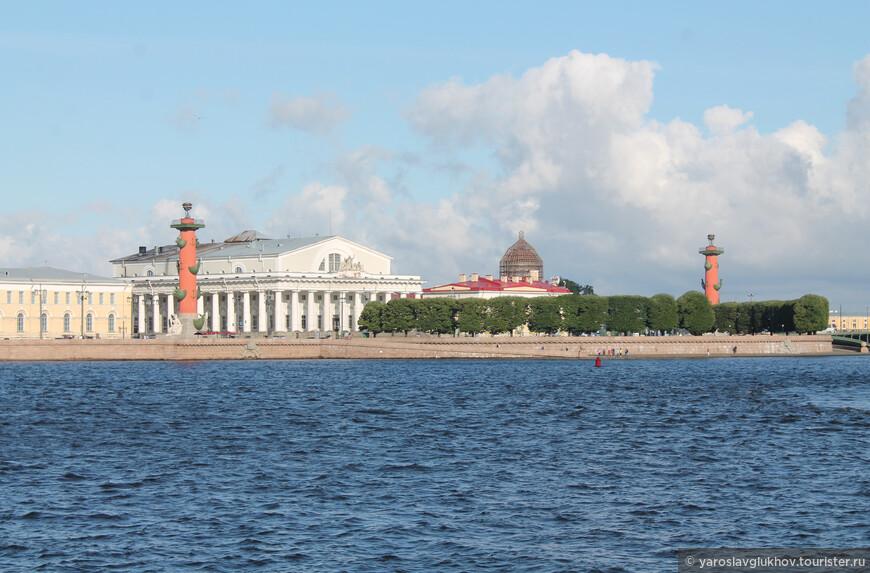 С Дворцовой набережной видны Ростральные колонны и здание Биржи — символы Стрелки Васильевского острова. Такой вид находится на реверсе 50-рублёвой купюры.