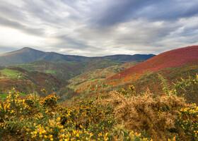 Camino de Santiago, путь паломника.Часть 8. Жара, дождь и соловей