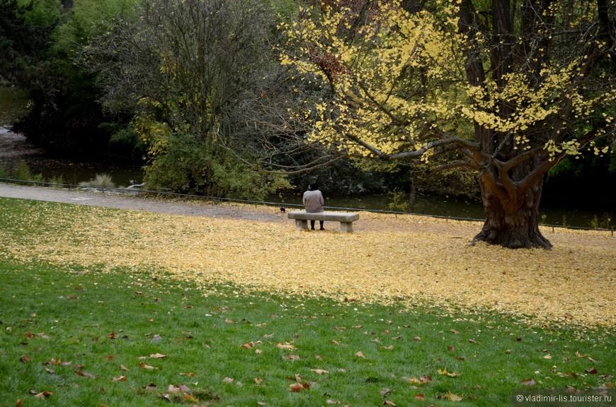 Даже в ноябре парк очень красочный, представляю какая здесь картина весной, летом или ранней осенью...