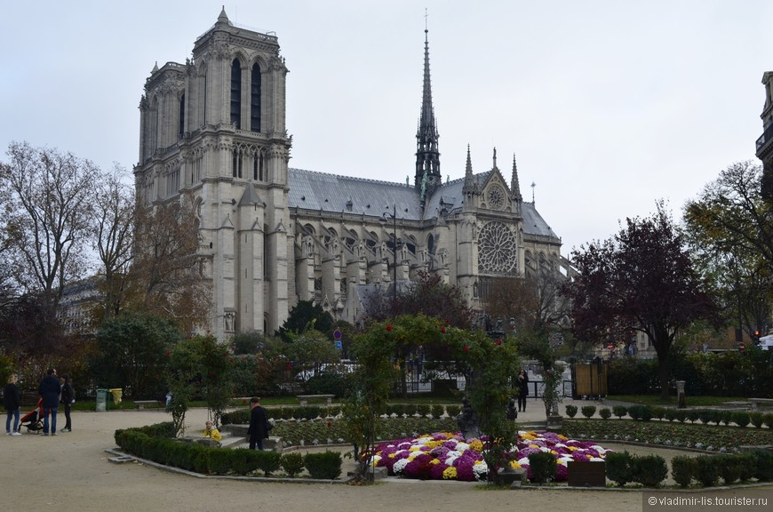 А на утро -  у всеми любимого Собора Парижской Богоматери. Сквер René Viviani