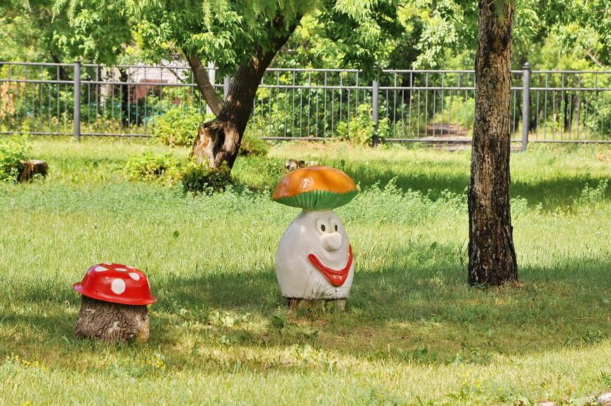 14. Это лучший грибочек, который я когда-либо видел.