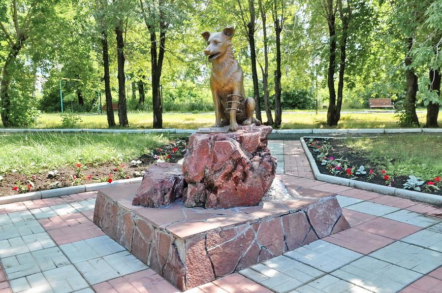 21. Памятник подопытным животным. Аппараты Илизарова устанавливаются и домашним питомцам.