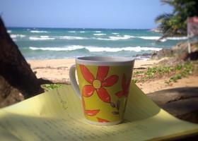 Наш затянувшийся отпуск в Доминикане