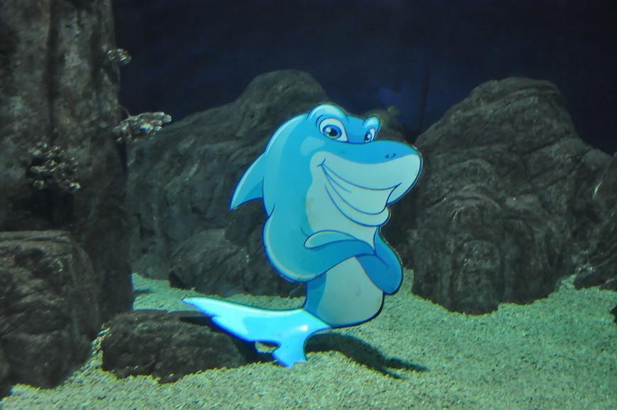34. А это вообще акула из «Русалочки», я даже на секунду не поверил, то она настоящая.