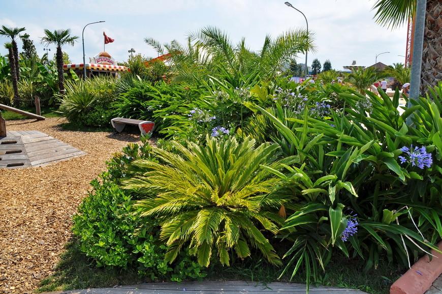 10. В парке есть несколько зон для релаксации, в данном случае множество растений рядом с которыми можно посидеть и расслабиться.