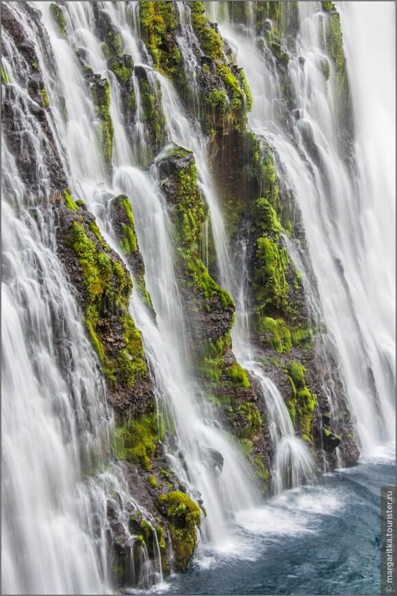 обожаю мох среди падающей воды