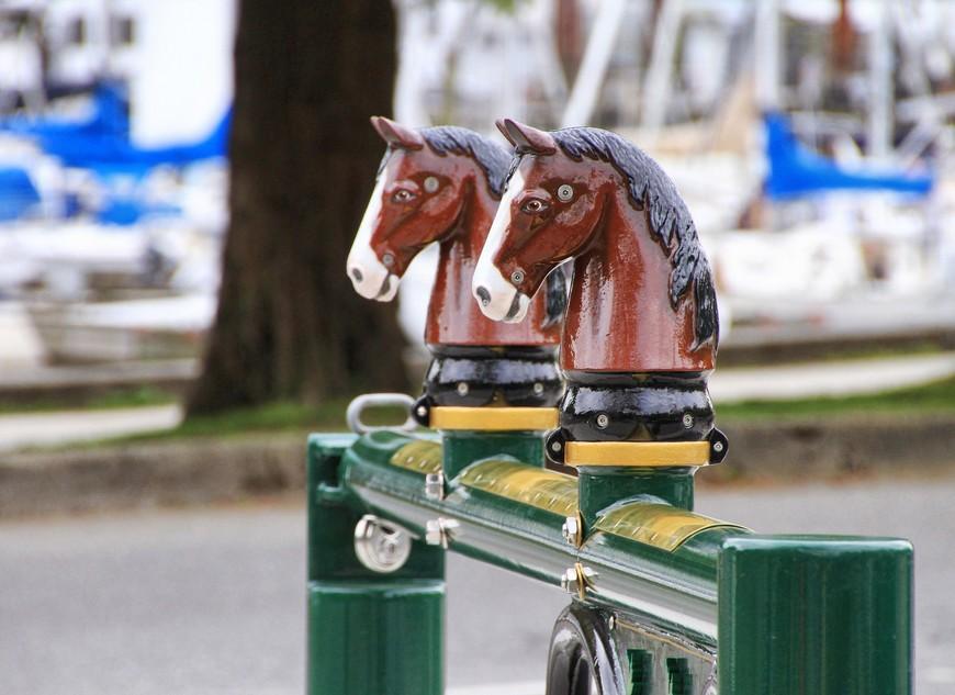 Парк можно объехать на конном экипаже. Подходишь к месту отправления, покупаешь билетик, берешь карту и вперед, с комфортом и ветерком!