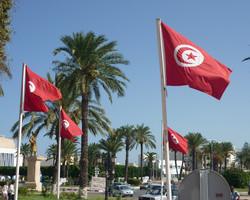 Тунис продлил режим ЧП до 21 февраля