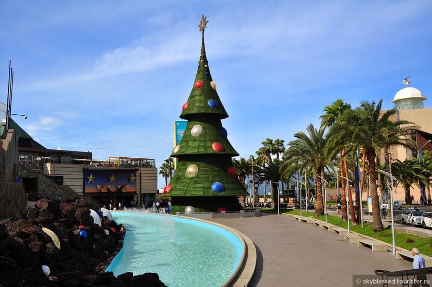 Праздничная елка на площади ) И таким может быть Новый год ))