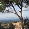 вид с городских стен на окрестности Сан Джиминьяно, экскурсии по Флоренции и Тоскане с частным индивидуальным гидом на русском языке